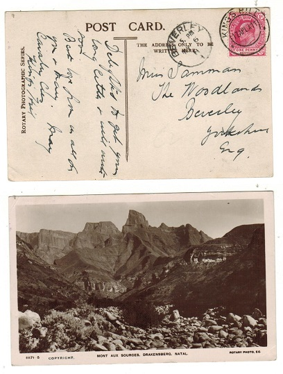 CAPE OF GOOD HOPE - 1911 1d rate postcard to UK used at KINGS HILL.