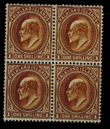 FALKLAND ISLANDS - 1904 1/- brown fine mint block of four.  SG 48.