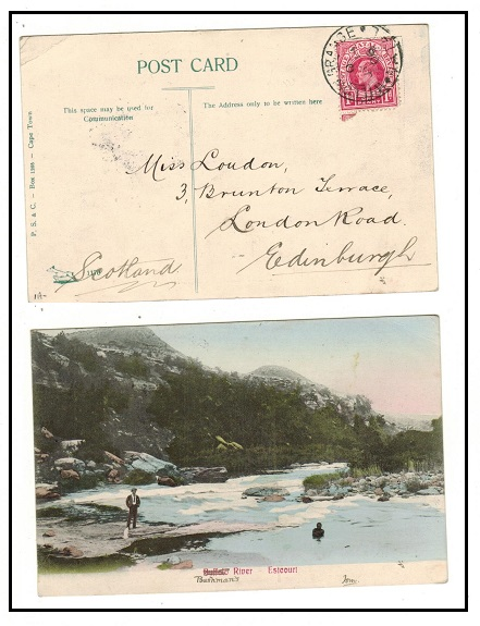 NATAL - 1906 1d rate postcard use to UK used at WILLOW GRANGE.