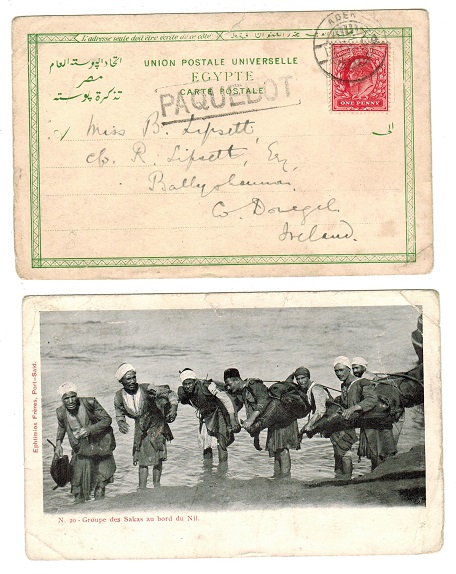 ADEN - 1904 postcard to Ireland with PAQUEBOT boxed strike.