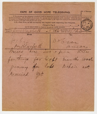 CAPE OF GOOD HOPE - 1886 TELEGRAPHS form cancelled WILLOWMORE.