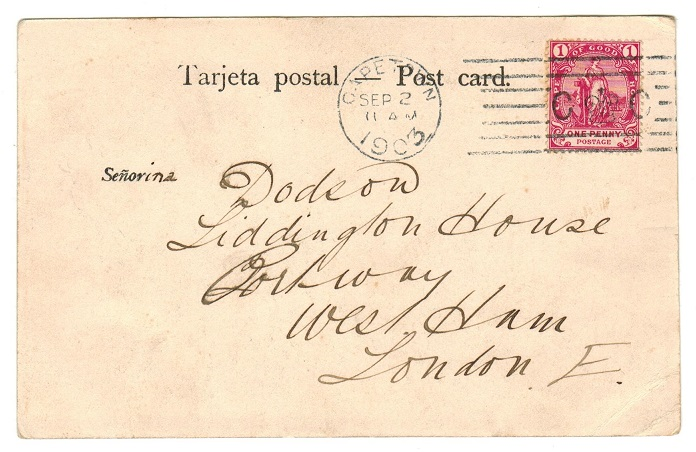 CAPE OF GOOD HOPE - 1902 1d rate postcard use to UK with scarce