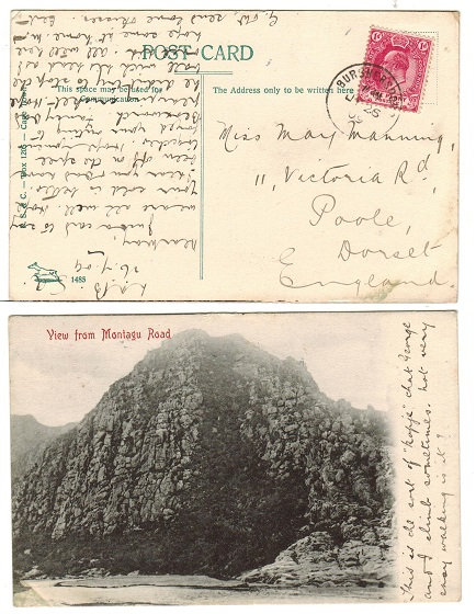 CAPE OF GOOD HOPE - 1909 1d rate postcard to UK used at BURGHERSDORP.